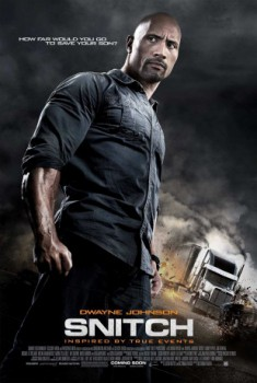 poster Snitch  (2013)