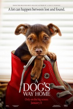 poster A Dog's Way Home  (2019)